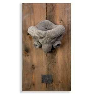 Wandornament Ramkop ovaal lijst 70 cm 5.007